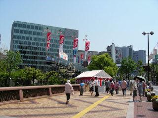 写真20080506w