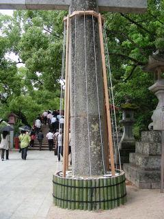 写真20080606b