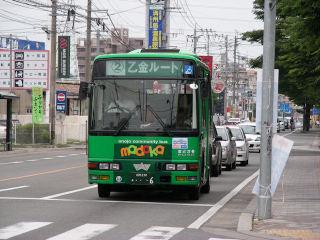 写真20080613a