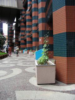 写真20080626a