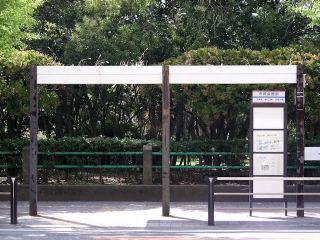 写真20080727a