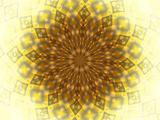 画像20081113c: 向日葵
