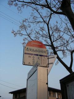 写真20081225a