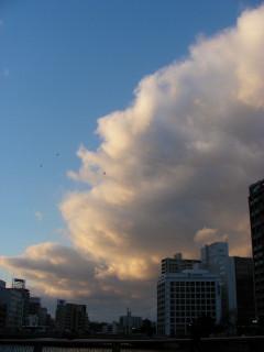 写真20081231g