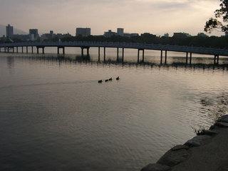 写真20060128e