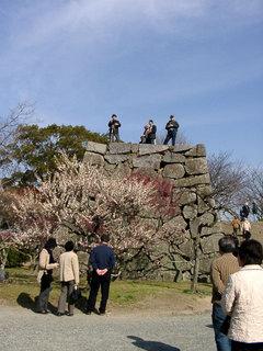 写真20060304c