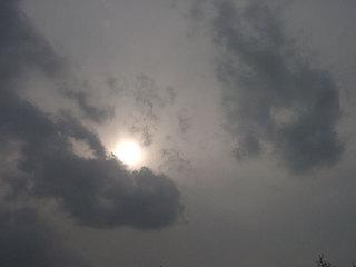 写真20060318b