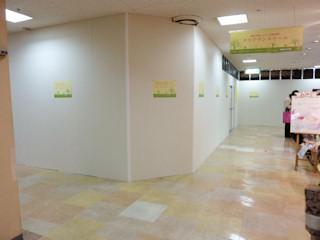 写真20100121a: 壁ができた