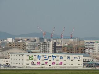 写真20100507a