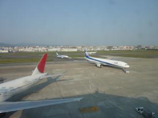 写真20100507b