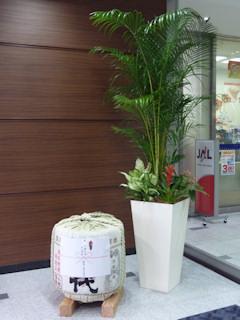 写真20100611c