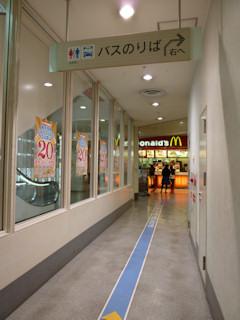 写真20101013b