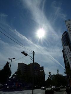 写真20101017b.jpg