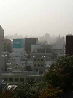 写真20101112p1050262b