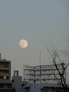 写真20101220p1100445b