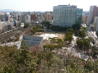 写真20110128p1140788b
