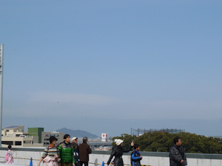 写真20110220p1180219b