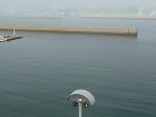 写真20110508p1330761b
