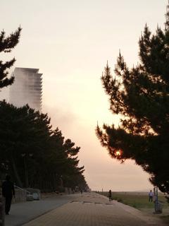 写真20110508p1340232b