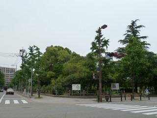 写真20110606p1370587b