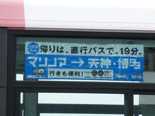 写真20110614p1380459b