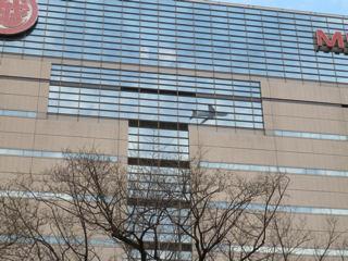 写真20120108p1730947b: 窓ガラスに映った飛行機