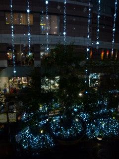 写真20121110p1360328