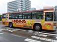 日清チキンラーメン(新ひよこちゃん)20100905p1520320b
