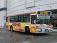 日清チキンラーメン(新ひよこちゃん)20100905p1520322b