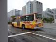 日清チキンラーメン(新ひよこちゃん)20100905p1520324