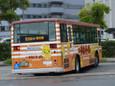 日清チキンラーメン(新ひよこちゃん)20100905p1520325