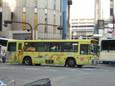 福岡市動植物園(黄)20100921p1540094b