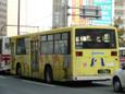 福岡市動植物園(黄)20110128p1150179b