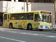 福岡市動植物園(黄)20110128p1150249b