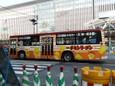 日清チキンラーメン(新ひよこちゃん)20110206p1160433b