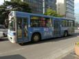 韓国済州島20110418p1280977b